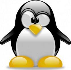 scrivere contenuti web per google penguin