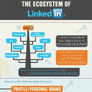 come funziona LinkedIn